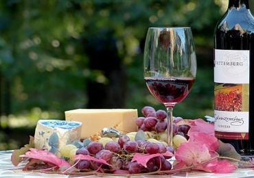Jak legalnie wejść w branżę importu win i wyprzedzić konkurencję?