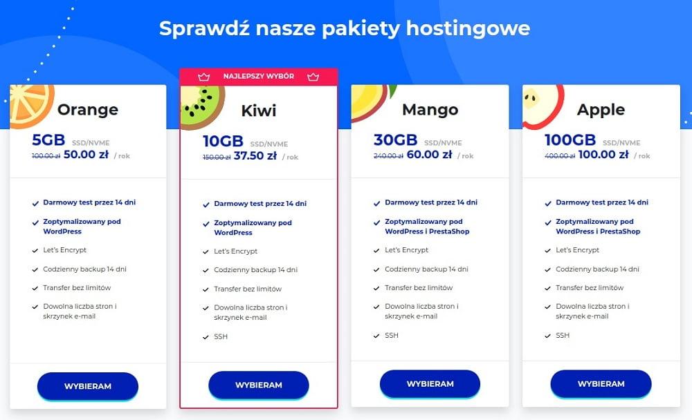 pakiety hostingowe lh.pl